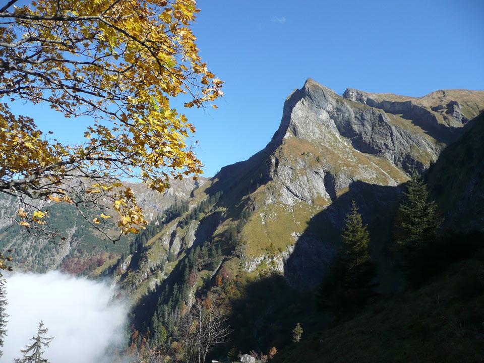 Tannheimer-Hof Berge Rädlergrat